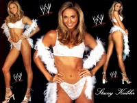 Stacy Keibler Art